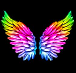 wings ingles fly trend tumblr freetoedit