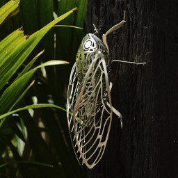 art silver metal insect bug sculpture freetoedit