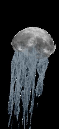 freetoedit moon jellyfish surreal smoke