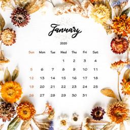 calendar wallpaper calendarwallpaper lockscreen january srcjanuarycalendar januarycalendar