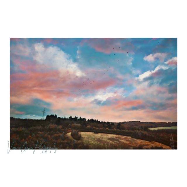 ✨ #photography #sunset #landscape #naturephotography #landscapephotography #myphotograph #nature #view #sky #clouds #nikon #nikonphotography  #freetoedit