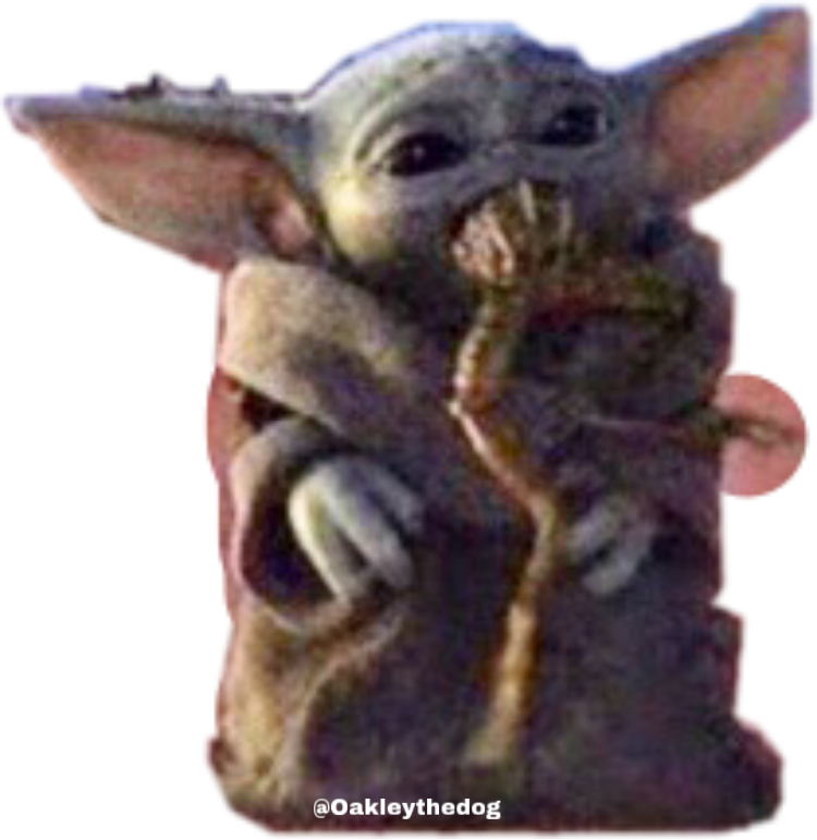 #Just a sticker of baby yoda eating a frog #freetoedit