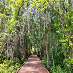 freetoedit outdoors nature naturelover hike