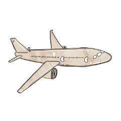 aeroplane travel plane fly flights freetoedit