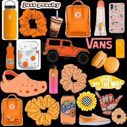 freetoedit orange vsco hydroflask vans scrunchies