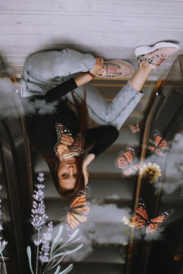 #freetoedit #butterflys #flowers  • • • • • • 🌿🦋💐