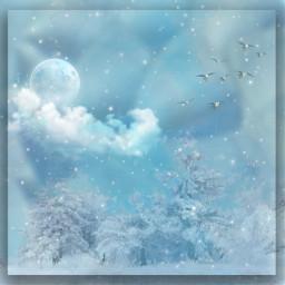 freetoedit winterwonderland bluecolors editedbyme
