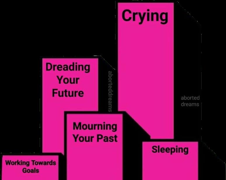 #meme #memes #sad #sadmeme #sadmemes #sadness #depression #cry #crying #sleep #sleeping #past #goals #future #pink #hotpink #graph #freetoedit