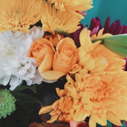 freetoedit flowers bouquet yellowroses nature