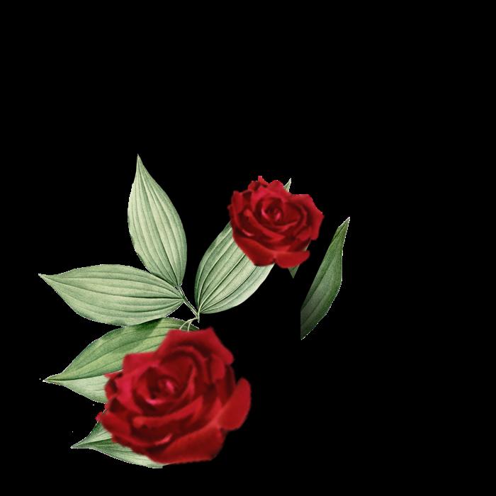 #capital #text #textart #letter #letters #love #trend #stickers #sticker #ftestickers #flowers #alphabets  #alphabet #fiesta #moodboard #freetoedit