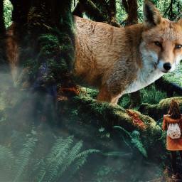 freetoedit fox foxgirl girl women scary