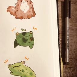 interesting animals frogs cute green cats jumping aesthetic traditionalart doodles ohuhumarkers summer stuff cheesyart artwork lineart