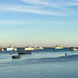 freetoedit sea boats goldenhour horizon