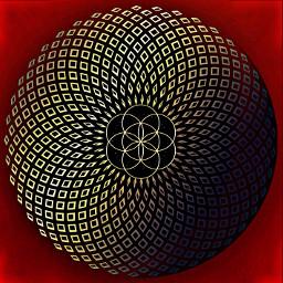 freetoedit sacredgeometry seedoflife floweroflife torus