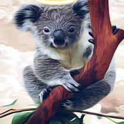 freetoedit koala koalabear australia fire