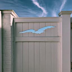 fence gate bird sky design freetoedit