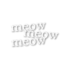 meow cat overlay aesthetic words freetoedit