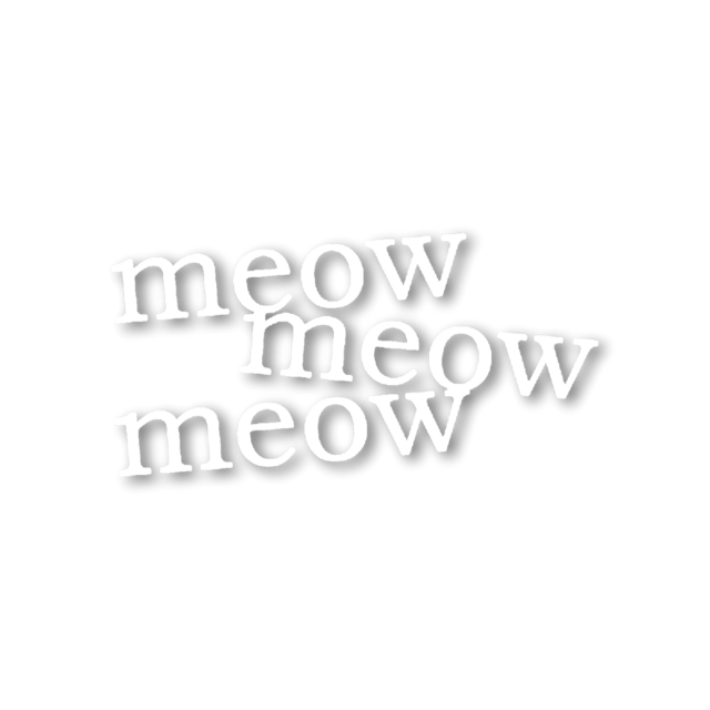 #meow #cat #overlay #aesthetic #words
