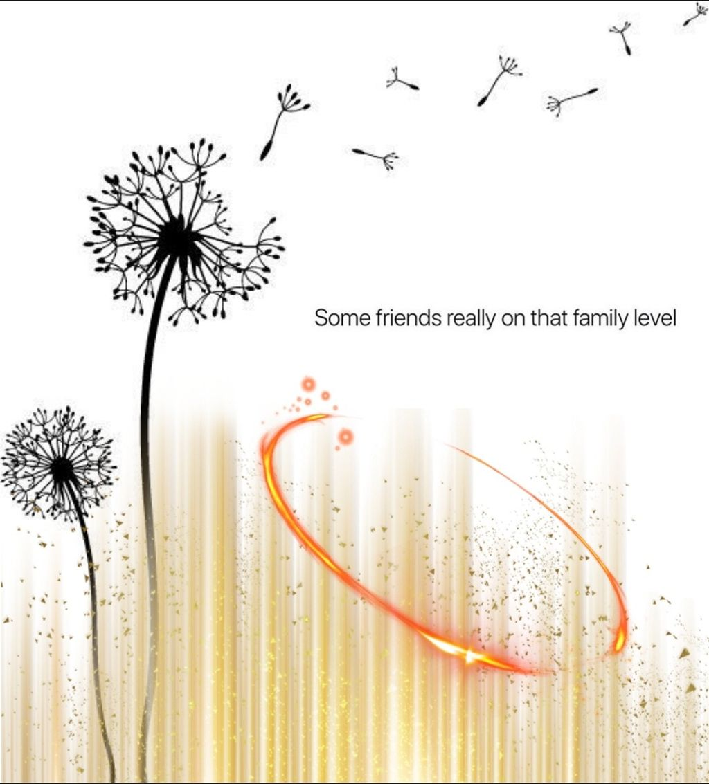 #flowers #freetoedit #stickers ✨🌸❤️