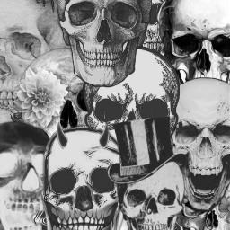 background skulls aesthetic edit interesting freetoedit