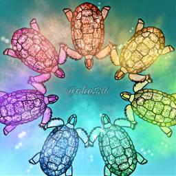 freetoedit turtle turtles rainbow colourful