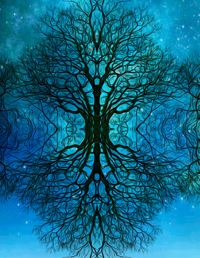 #freetoedit #treeoflife #interesting #peace #stars #love #universe #perspective #life #themeaningoflife