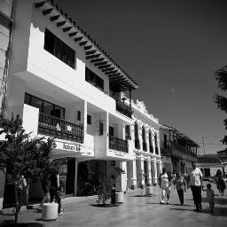 white black monochrome monochromephotography architecture
