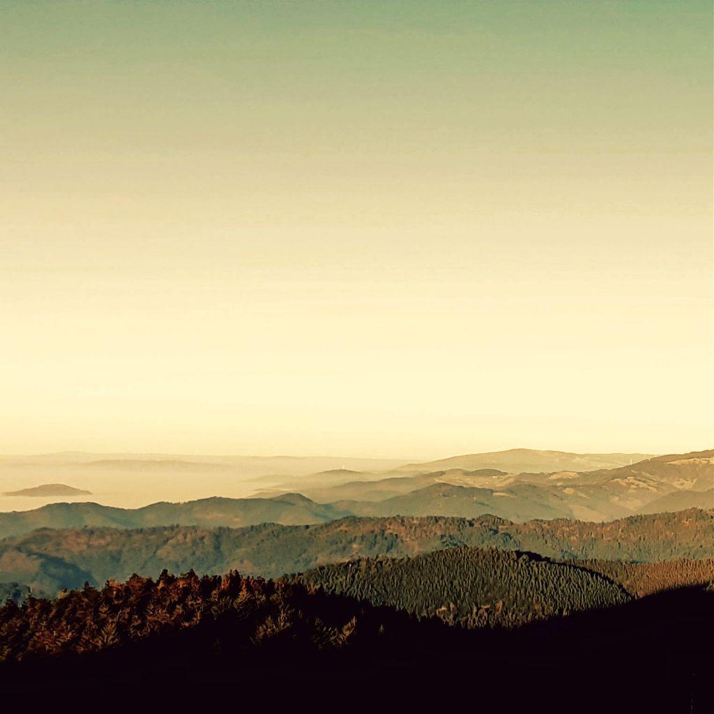 #freetoedit #naturephotography #fog #winter #mountains #landscape #sunlight #trees #earth #foggymountain  #hill #dreamlike #beautyfullcolours #viewpoint #view #natur #relaxation #rimixit #picsart #meadow #forest #myedit #wonderland #photography #myphotography #sky