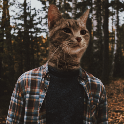 cat head surreal funny forest freetoedit