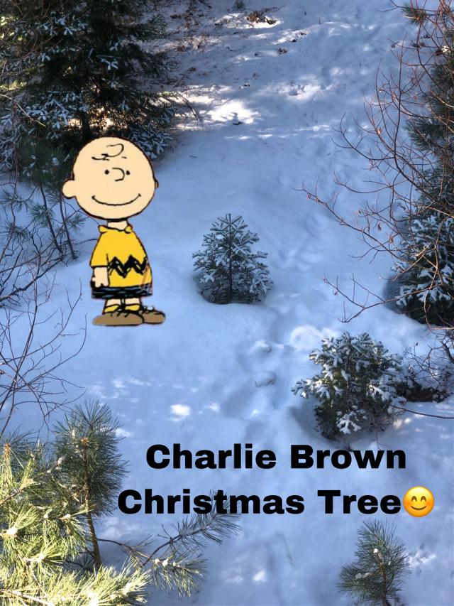 #freetoedit lolololol #charliebrownchristmas