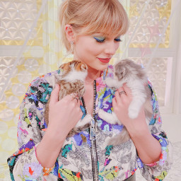 taylor swift taylorswift cats lover