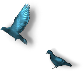 birds blue two flying sitting freetoedit