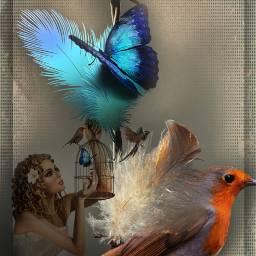 freetoedit myedit doubleexposure bird butterfly