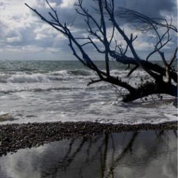 nature wintertime bytheseashore roughsea wavescrashing freetoedit