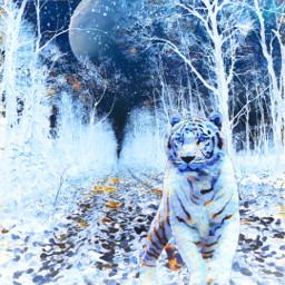 freetoedit vipshoutout negativeeffect winterbluesmagiceffect white