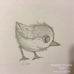 traditionalart sketch bc art birds