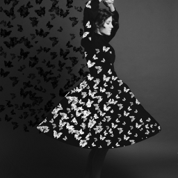 freetoedit butterflies butterfly dress dispersion