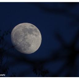 freetoedit followme followmeplease moon moonlight