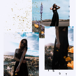 freetoedit collage polaroid glitter