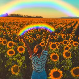 sunflowervibes freetoedit
