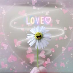daisy flower stickers swirl heart freetoedit