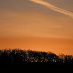 silhouette colourful skyandclouds morningsky outandabout freetoedit
