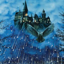 freetoedit fantasy hogwarts harrypotter owl
