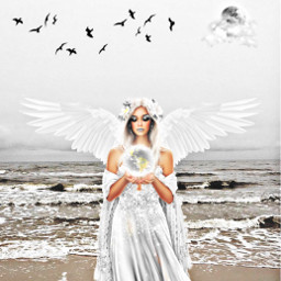 freetoedit angel sea turkey party
