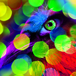 freetoedit myoriginalwork originalart conceptart colorful ircmysteriouseye