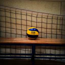 volleyball4life volley pallavolo sport life