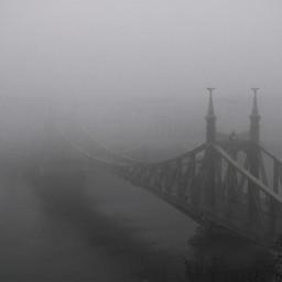 budapest hungary bridge b trees