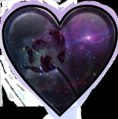 freetoedit schearts hearts