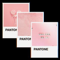 pantone pink aesthetic aestheticedit aesthetictext freetoedit