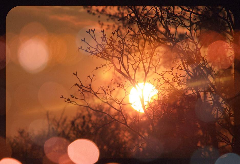 #freetoedit u like the #sunset